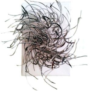 Cheveux d'O (2010)